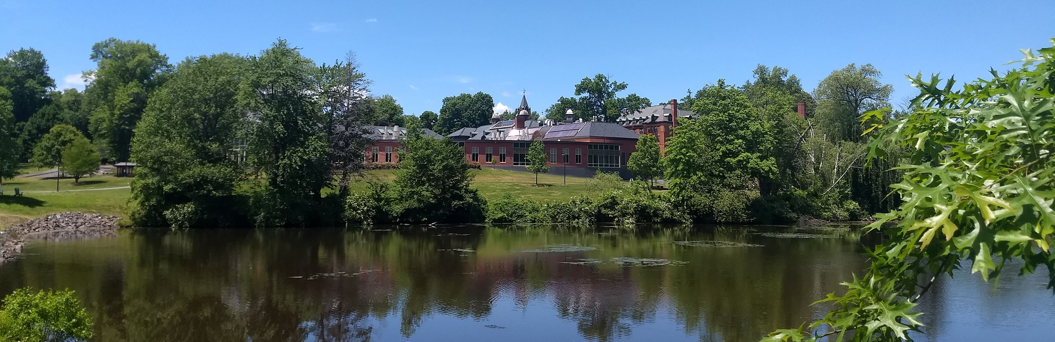 Summer view of campus from Lower Lake