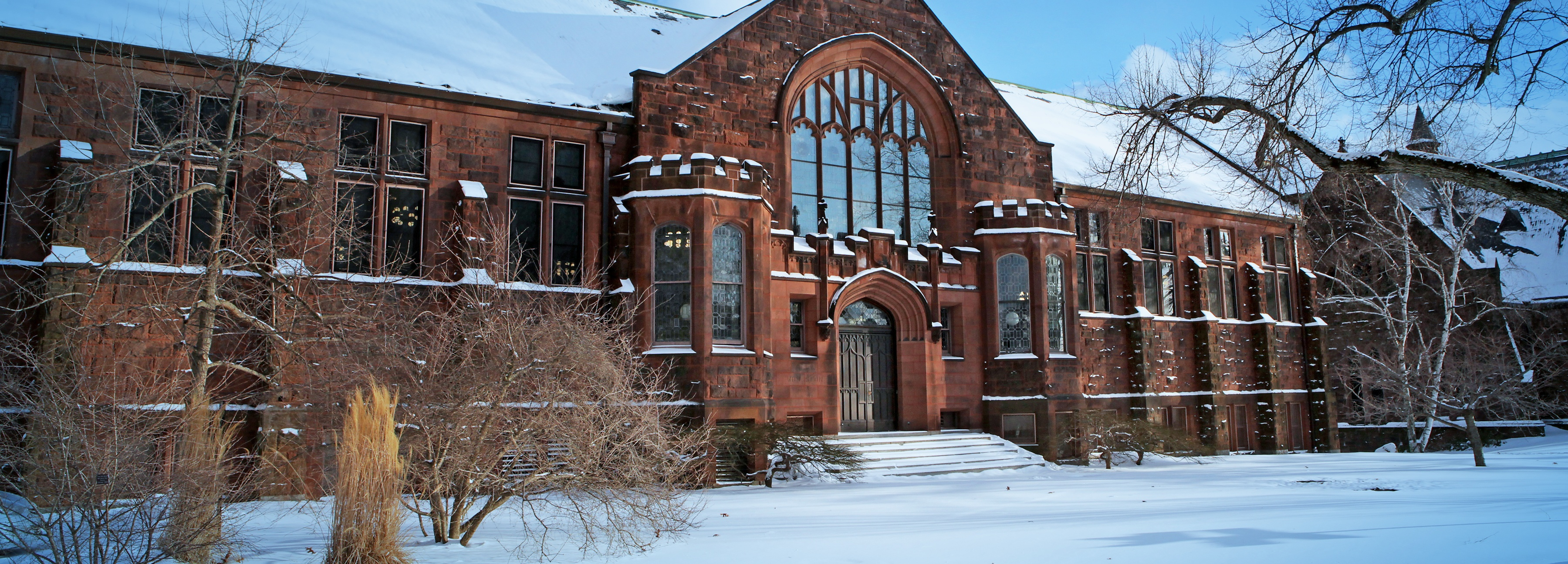 Williston Library in the snow