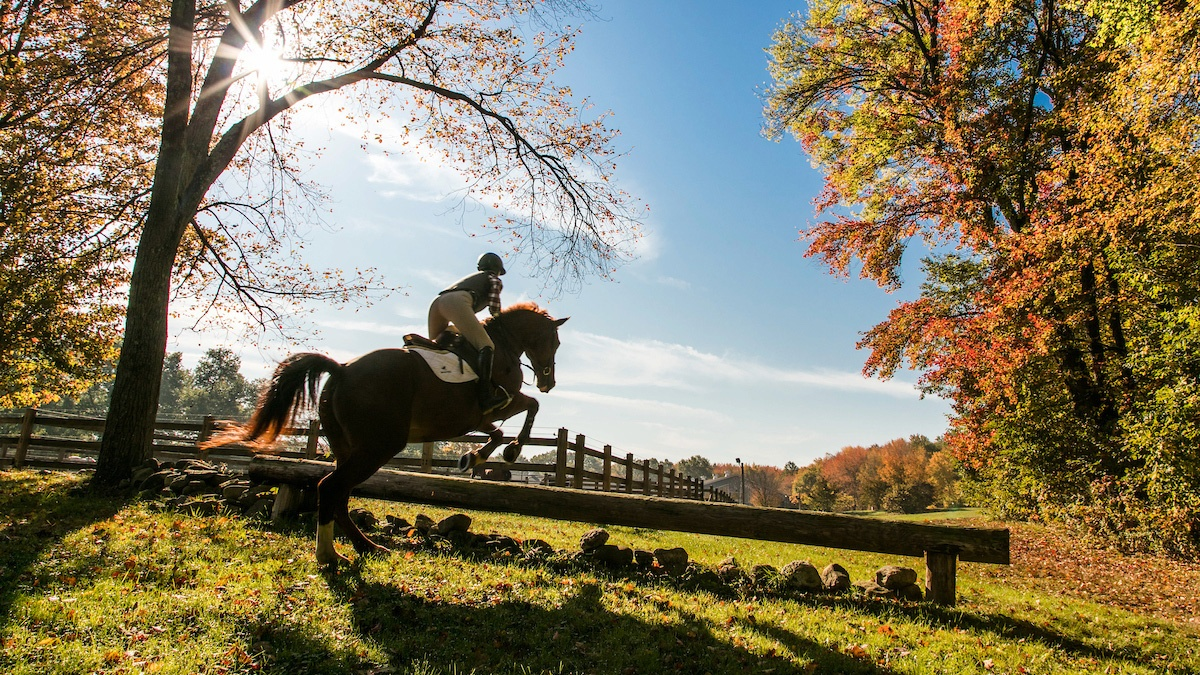 Equestrian Center and trails