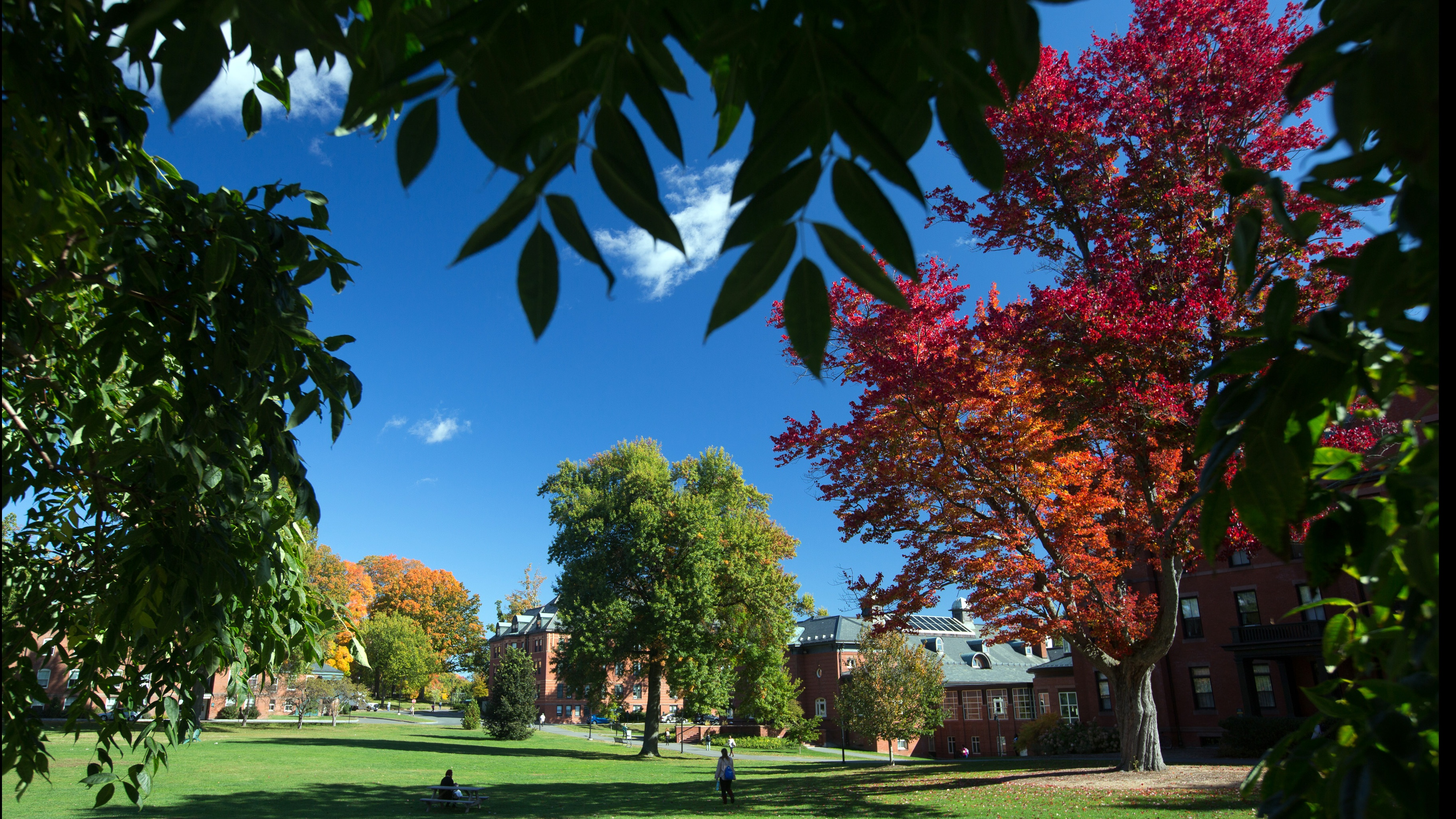 MHC campus in the fall