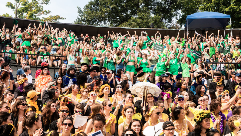 A sea of yellow and green in the amphitheather