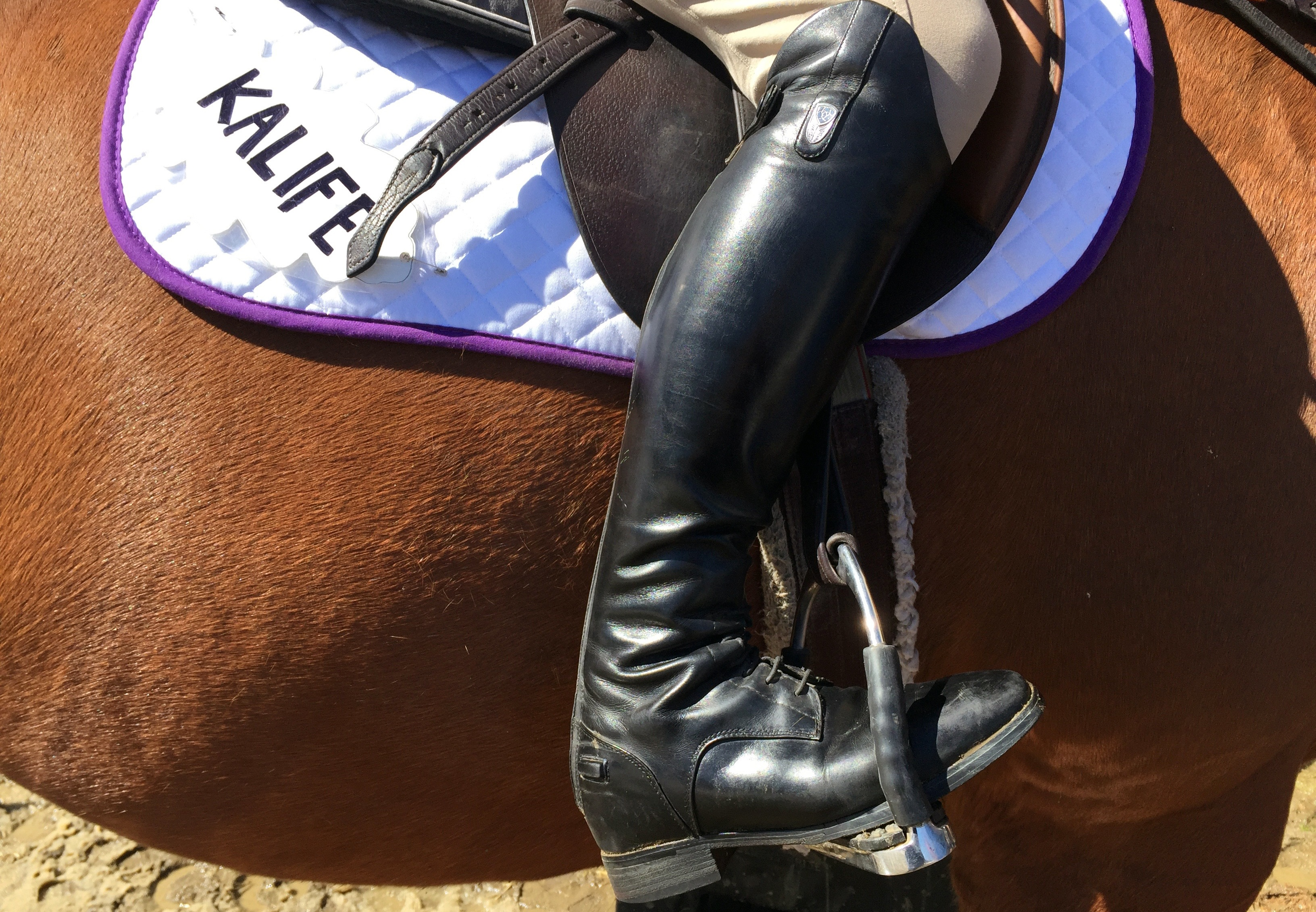 Shiny riding boot