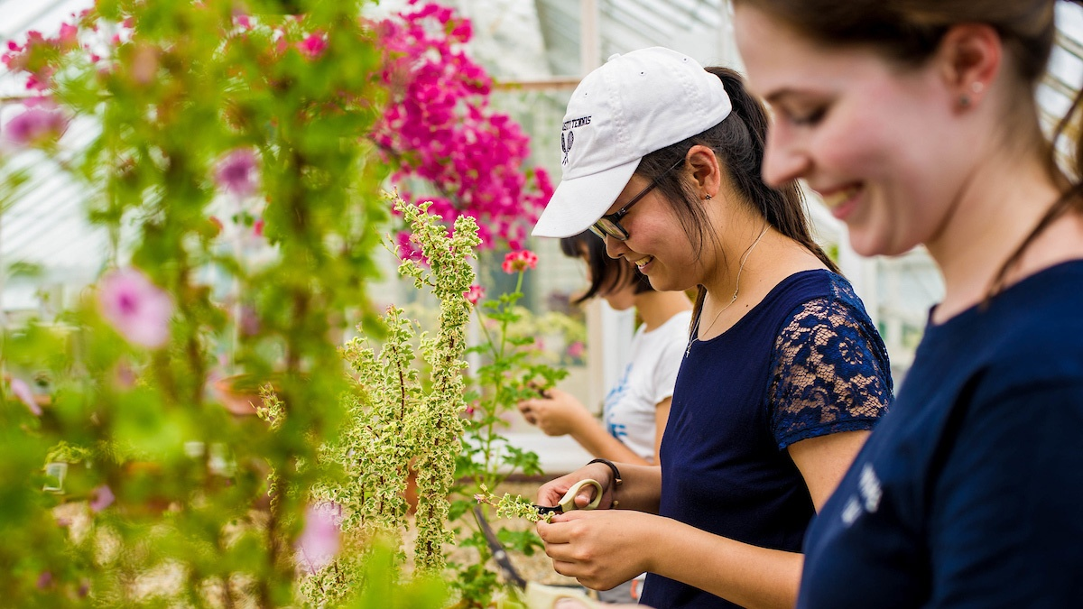 Students at the Talcott Greenhouse