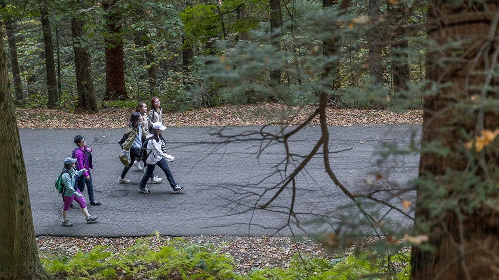 Photo of students hiking to the top