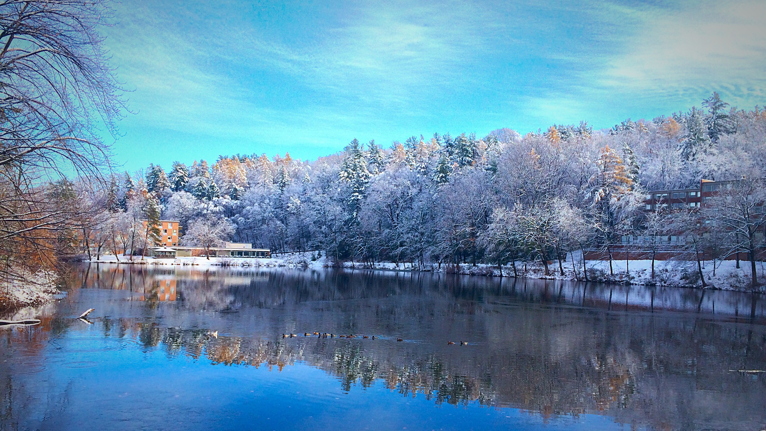 Lower Lake in winter
